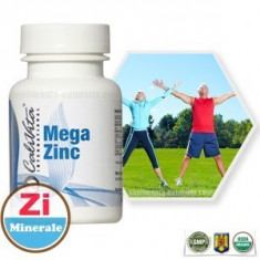 Mega Zinc (100 tablete) Calivita