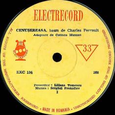 Charles Perrault - Cenusareasa (7