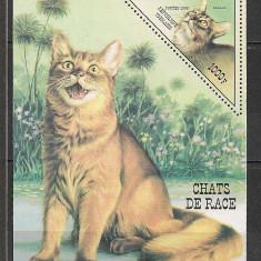 Togo.1999 Rase de pisici-Bl.   ST.761