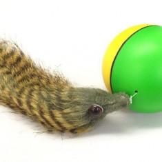 Minge distractiva - Beavers Ball - Jucarie interactiva