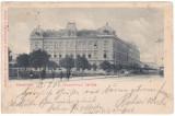 #1808- Ro, Timisoara, Josefini, cp. 1902: Bloc locuinte inchiriate, tram, anim.