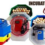 Incubator electric Cleo 5