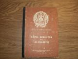 Dumitru Staniloae  - Chipul Nemuritor al lui Dumnezeu, Alta editura