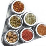 Set condimente cu suport magnetic Grunberg 327 - Solnita