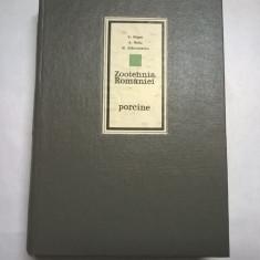 V. Gligor, s.a. - Zootehnia Romaniei {porcine} - Carti Agronomie