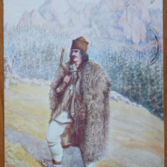 Un cioban pe Muntele Rarau, Suceava, circulata, 1906 - Carte Postala Bucovina 1904-1918, Printata