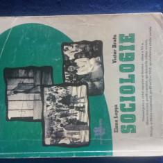 Manual de sociologie clasa a 11-a - Manual scolar Altele, Clasa 11, Alte materii
