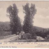 #1825- Romania, Resita, carte postala circulata 1902: Detaliu, pod, Fotografie