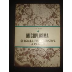 P. G. PLOAIE - MICOPLASMA SI BOLILE PROLIFERATIVE LA PLANTE