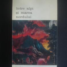 EDGAR PAPU - INTRE ALPI SI MAREA NORDULUI {colectia BIBLIOTECA DE ARTA}