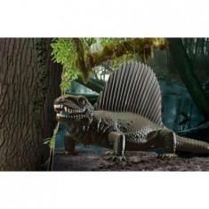 Set Macheta Dinozaur Dimetrodon - 06473 - Macheta auto Revell