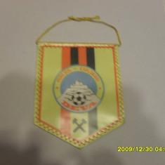 Fanion Muresul Expl. Deva - Fanion fotbal