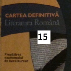 Eseul (varianta putin mai veche si mai complexa) Literatura Romana Bac - Teste Bacalaureat art