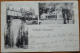 Buzias , circulata , 1899 , clasica, Printata
