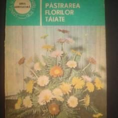ALEXANDRINA AMARIUTEI - PASTRAREA FLORILOR TAIATE