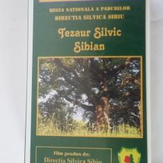 TEZAUR SILVIC SIBIAN, ALEXANDRU SATMARI, CASETA VIDEO - Film documentare, Romana