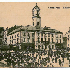 2352 - Bucovina, CERNAUTI, Market - old postcard - unused - Carte Postala Bucovina 1904-1918, Necirculata, Printata