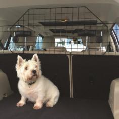 Plasa separatoare spatiu portbagaj de spatiu pasageri pentru transport caini, fixare tetiera
