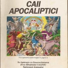 Caii apocaliptici de Nicodim Mandita - Carti ortodoxe