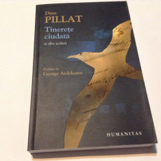 TINERETE CIUDATA SI ALTE SCRIERI de DINU PILLAT, RF12/4 - Roman, Humanitas
