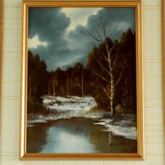 Pictura / tablou ulei pe carton tare - Pictor strain, Natura, Realism
