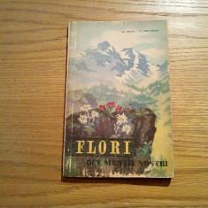 FLORI DIN MUNTII NOSTRI - Al. Beldie, C. Pridvornic - 1959, 102 p. - Carte gradinarit