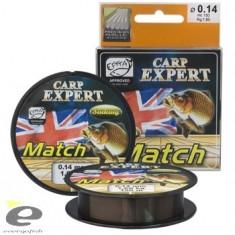 Fir Carp Expert Match Sinking 0.18MM - Fir Pescuit