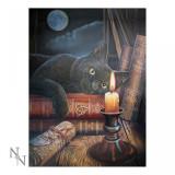Tablou 3D pisică Ora Vrăjitoarelor - Tablou canvas