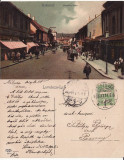 Cluj- animata, Circulata, Printata