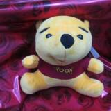 Plus Winie the Pooh muzical
