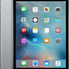 Apple Apple iPad mini 4 Wi-Fi 32GB, space gray (mny12hc/a), Gri