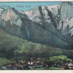 BUSTENI MUNTII JEPI ED. COOPERATIVA TRICOLORUL BUSTENI - Carte Postala Muntenia dupa 1918, Circulata, Printata