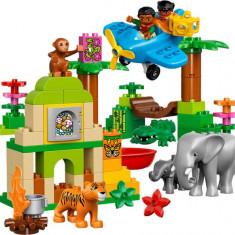 LEGO® LEGO® DUPLO® Jungle 10804