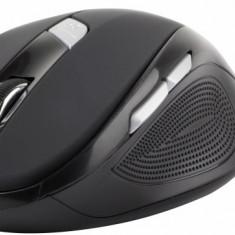 Natec wireless optical mouse DOVE (1600DPI/nano rec./2, 4GHz)