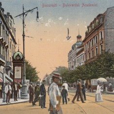 BUCURESTI, BULEVARDUL ACADEMIEI, CIRCULATA - Carte Postala Muntenia 1904-1918, Printata