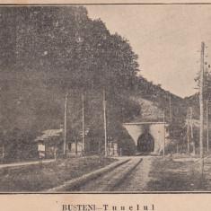 BUSTENI TUNELUL - Carte Postala Muntenia dupa 1918, Necirculata, Printata
