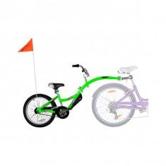 Bicicleta Co-Pilot Verde WeeRide WR06GR - Bicicleta copii
