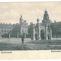 3579 - Bucovina, CERNAUTI, Metropolitan Residence - old postcard - unused - Carte Postala Bucovina 1904-1918, Necirculata, Printata