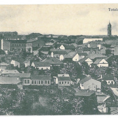 3567 - Bucovina, CERNAUTI, Panorama - old postcard - unused - Carte Postala Bucovina 1904-1918, Necirculata, Printata