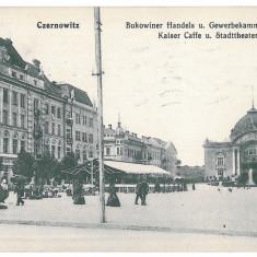 3552 - Bucovina, CERNAUTI, Market - old postcard - used - 1914 - Carte Postala Bucovina 1904-1918, Circulata, Printata