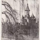 Bnk cp Timisoara - Catedrala Mitropoliei Banatului - necirculata - Carte Postala Banat dupa 1918, Printata
