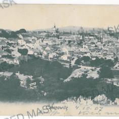 3565 - Bucovina, CERNAUTI, Panorama - old postcard - unused - 1907 - Carte Postala Bucovina 1904-1918, Necirculata, Printata