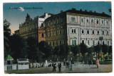 3562 - Bucovina, CERNAUTI,  Market - old postcard - unused, Necirculata, Printata