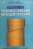 CHIRURGIA TRAUMATISMELOR OSTEOARTICULARE - Niculescu, Ifrim, Diaconescu