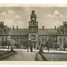 3566 - Bucovina, CERNAUTI, Resedinta Metropolitana - old postcard - used - 1934 - Carte Postala Bucovina dupa 1918, Circulata, Printata
