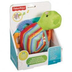 Fp Musical Teething Turtle Mattel Cgn90