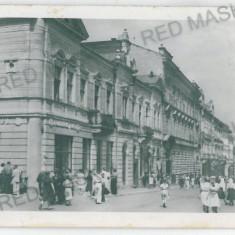 647 - Bucovina, CERNAUTI - old postcard - unused - Carte Postala Bucovina dupa 1918, Necirculata, Printata