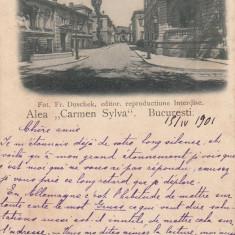 BUCURESTI, ALEA CARMEN SYLVA, FOTOGRAF FR. DUSCHEK, CLASICA, CIRC. 1901 - Carte Postala Muntenia pana la 1904, Circulata, Printata