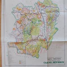 HARTA FORESTIERA CARAS-SEVERIN