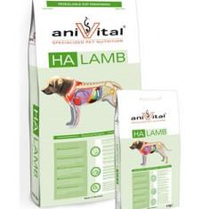Hrana Caine Anivital HA Miel 4 kg - Hrana caini